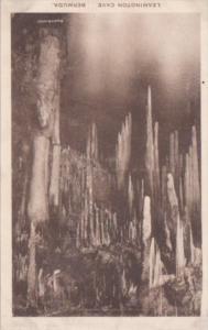Bermuda Leamington Cave Albertype