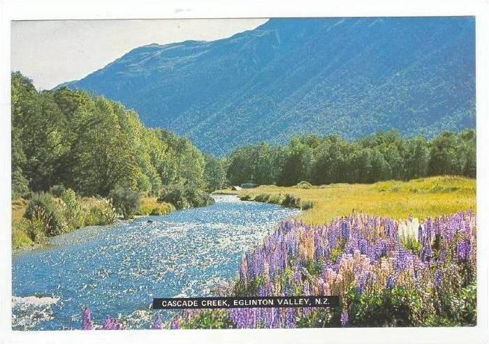 Cascade Creek, Eglinton Valley, New Zealand 60-70s