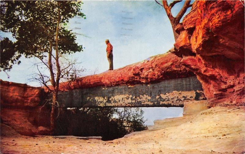 Petrified Forest National Monument Arizona~Agate Bridge Near First  Forest~1961