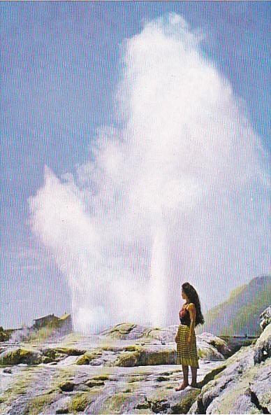 New Zealand Pohutu Geyser Whakarewarewa Rotorua