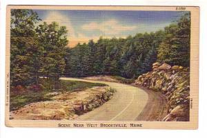 Scene Near West Brooksville Maine, Nice Cancel