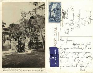 Gibraltar, Alameda Park, Jaw Bone (1946) Beanland, Malin & Co. RPPC Postcard