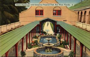Florida Key West Open Aquarium With Gorgeous Tropical Fish