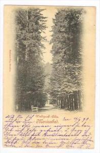 Marienbad now Mariánské Lázně  , Austria now Czech Republic, PU-1898  ...