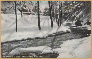 In Winter's Mantle - In Bronx Park, New York - Tuck's Post Card