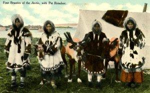 Arctic Region - Four Beauties with Pet Reindeer