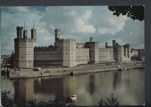 Wales Postcard - Caernarvon Castle   T4560