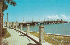 Florida St Augustine Bridge Of Lions