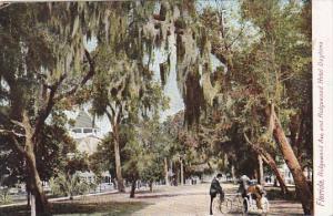 Florida Daytone Bicycles On Ridgewood Avenue Showing Ridgewood Hotel 1916