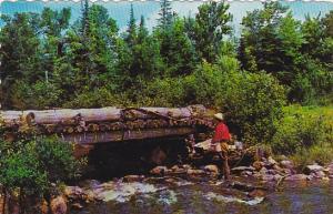 Brook Fishing In Canada