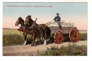 Carrying Grain to the Elevators, Saskatchewan, Two Horses and Man on Cart