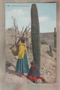 Native American Indian Antique Postcard Southwest Saguaro