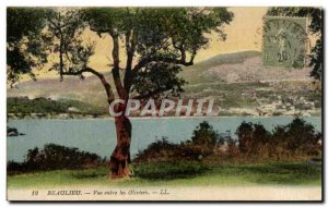 Old Postcard View Beaulieu Between Les Oliviers