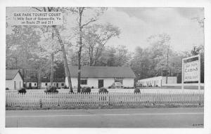 Gainesville Virginia~Oak Park Tourist Court~Roadside Motel~Cabins~1940s B&W PC