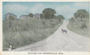 BRIGGSVILLE, Wisconsin, 00-10s; Greetings, Scene of Dog in Road