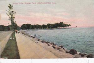 Connecticut Bridgeport Breezy Point Seaside Park 1908