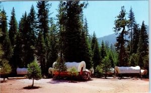 HUME LAKE, CA  California    WAGON TRAIN CAMP  1968   Roadside  Postcard