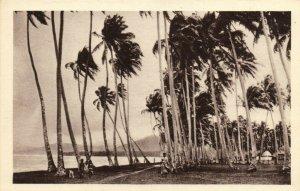 PC CPA SAMOA, PACIFIC, UN ORAGE SUR SAMOA, Vintage Postcard (b19450)