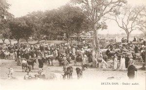 Delta Dam, Egypt. Donkey Market  Old vintqge Eyptian postcard