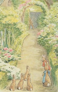 The Tale Of The Flopsy Bunnies 1909 Beatrix Potter Book Postcard