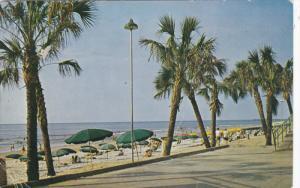 MYRTLE BEACH , South Carolina , PU-1961 ; South along Boardwalk