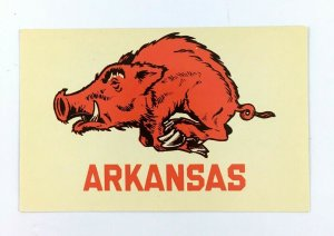 1966 University Arkansas Postcard Razorbacks Fayetteville AR Pig Sooey Go Hogs