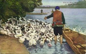 formosa taiwan, Native Duck Keeper at Work (1930s) Postcard