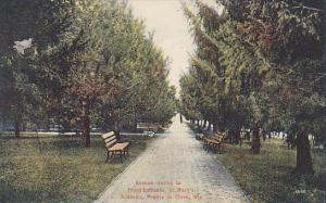 Avenue leading to Front Entrance, St. Mary´s Academy, Prarie du Chien, WIsco...