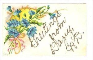 Flower Greetings, DAZEY, North Dakota, PU-1900s