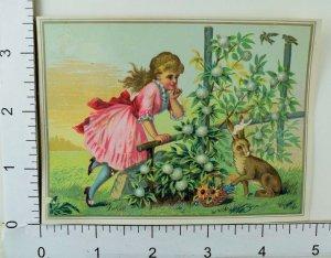 Easter Card C.H Ripper Choice Fruit & Confectionery Girl Brown Rabbit Garden #E