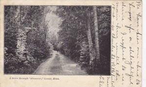 A drive through Stonover, Lenox, Massachusetts,  PU-1905