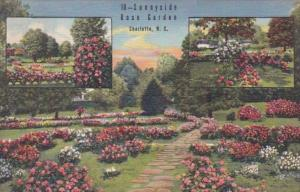North Carolina Charlotte Sunnyside Rose Garden 1947 Curteich
