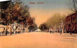 Spain Old Vintage Antique Post Card Alameda Malaga Unused