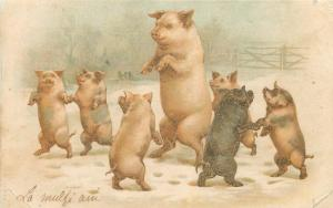 Humanized pigs 1900s litho