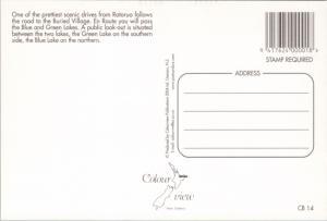 Road to Buried Village Rotorua New Zealand NZ Unused Vintage Repro Postcard D45
