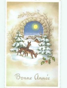 foreign Old Postcard BABY DEER IN THE SNOW AC3348