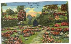 Sunnyside Rosa Garden, Charlotte, North Carolina, 30-40s