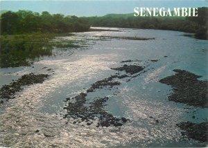 Postcard Senegambian landscape