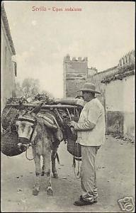 spain, SEVILLA, Tipos Andaluces, Donkey, Costumes 10s