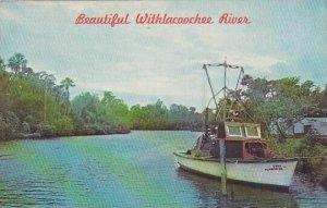 Florida Beautiful Withlacoochee River