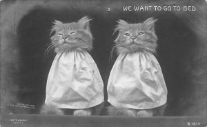 Cat Post Card, Cats Postcards We want to go to bed Real Photo 1908