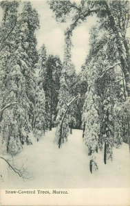 murree snow covered trees old postcard pakistan