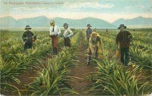 Artist impression C-1910 Pineapple Plantation Hawaiian Islands Postcard 20-1014