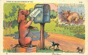 Artist impression 1943 Dog Mail Comic Humor Teich Postcard 20-599