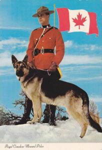 Royal Canadian Mounted Policeman With Police Dog, Canada, 50-70's