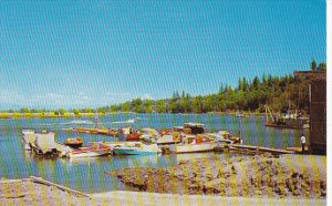 Canada Marina and Nicomeki River Crecent Beach British Columbia