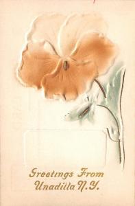 Unadilla New York~Tan White Pansy~Green Stem~Airbrushed Embossed~1910 Postcard