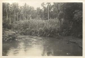 british north borneo, SABAH TAWAU, River Scene II (1947) Real Photo