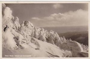 RP; Winter am Arbergipfel, Bayr, Wald, Hesse, Germany, 10-20s