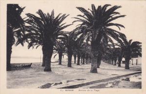 Avenue De La Plage, ARZEW (Algeria), Africa, 1910-1920s